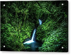 Jungle Waterfall Acrylic Print by Nicklas Gustafsson