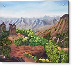 Juniper Canyon   Lost Mine Trail Acrylic Print by Ruth  Housley