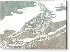 Juniper Titmouse Acrylic Print