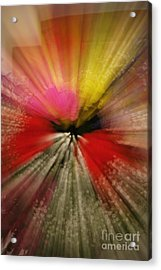 Just A Blur Acrylic Print by Michelle Hastings