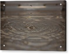 Acrylic Print featuring the photograph Just A Drop by Michael Albright