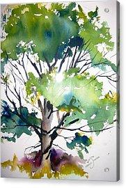 Just A Tree Acrylic Print