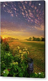 Just Another Post Acrylic Print by Phil Koch