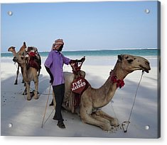 Just Married Camels Kenya Beach 2 Acrylic Print