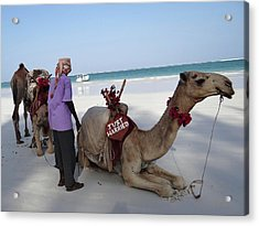 Just Married Camels Kenya Beach Acrylic Print