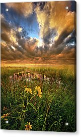 Just Moving Slow Acrylic Print by Phil Koch