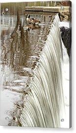 Just On The Edge Acrylic Print by Karol Livote