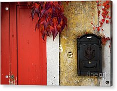 Acrylic Print featuring the photograph Just Red by Yuri Santin