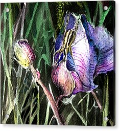 Just Visiting Acrylic Print by Mindy Newman