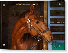 Just Waiting For My Turn To Race Acrylic Print by Robert L Jackson