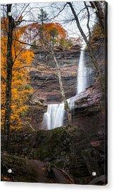 Kaaterskill Falls Thru The Forest Portrait Acrylic Print