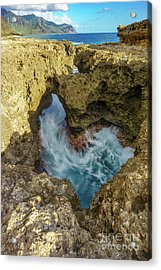 Acrylic Print featuring the photograph Kaena Point Trail by Hans- Juergen Leschmann