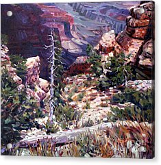 Kaibab Trail Acrylic Print by Donald Maier