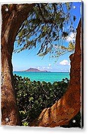 Kailua Acrylic Print