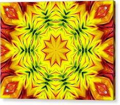 Kaledoscopic Patterns 2 Acrylic Print