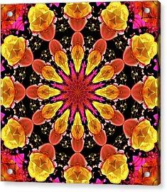 Kaleidoscope Art I I Acrylic Print by Laura Mountainspring