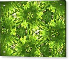 Kaleidoscope Flower Acrylic Print by Julia Wilcox