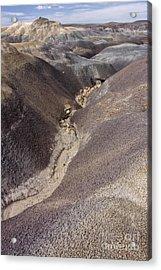 Kaleidoscope Landscape Acrylic Print by Melany Sarafis
