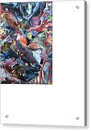 Kali Acrylic Print by Dan Cope