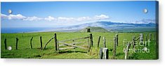 Kamuela Pasture Acrylic Print by David Cornwell/First Light Pictures, Inc - Printscapes