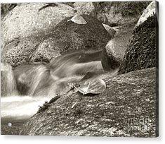 Kanaka Creek Bw Acrylic Print by Sharon Talson