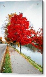 Kanawha Boulevard In Autumn Acrylic Print