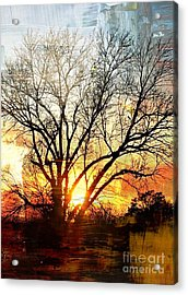 Kansas Sunset Acrylic Print