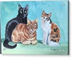 Kates's Cats Acrylic Print