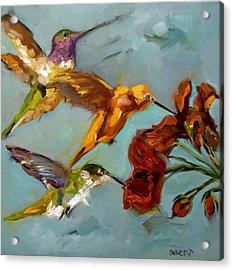Kathy's Humming Birds Acrylic Print