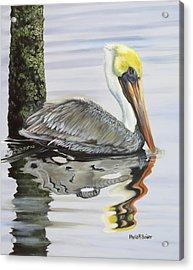 Kathy's Pelican Acrylic Print