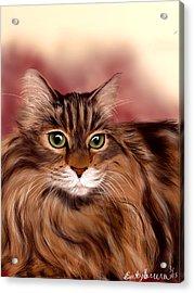 Katie- Custom Cat Portrait Acrylic Print