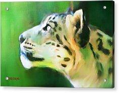 Katso Valo Acrylic Print