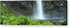 Kauai Inland Falls Acrylic Print by David Cornwell/First Light Pictu - Printscapes