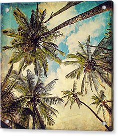 Kauai Island Palms - Blue Hawaii Photography Acrylic Print