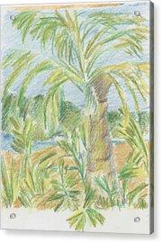 Kauai Palms Acrylic Print