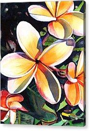 Kauai Rainbow Plumeria Acrylic Print