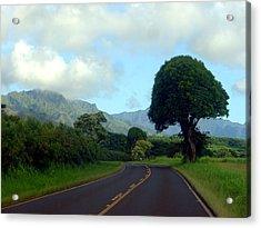 Kauai Road Acrylic Print by Davida Parker