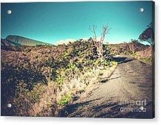 Kaupo Other Road To Hana Sunset Piilani Highway Maui Hawaii Acrylic Print by Sharon Mau