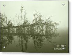 Acrylic Print featuring the photograph Kayak Trap II by Jan Piller