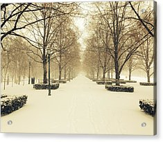 Kc Snow With Parisian Flare Acrylic Print