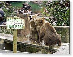 Keep Off Fish Pass  Acrylic Print