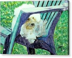 Keep Off The Grass Acrylic Print