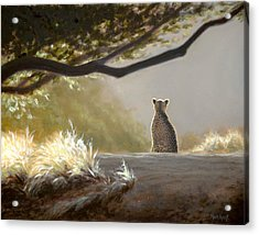 Keeping Watch - Cheetah Acrylic Print