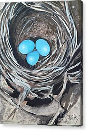 Kelly's Nest Acrylic Print by Donna McLarty