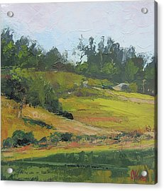 Acrylic Print featuring the painting Kenilworth Hills Queensland Australia by Chris Hobel