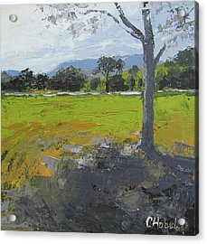 Acrylic Print featuring the painting Kenilworth Landscape Queensland Australia by Chris Hobel