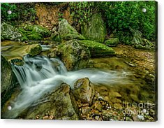 Kens Creek In Cranberry Wilderness Acrylic Print