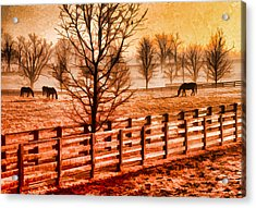 Kentucky Horse Farm  Acrylic Print by Dennis Cox WorldViews