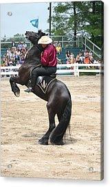 Kentucky Horse Park - Show Horse Acrylic Print by Thia Stover