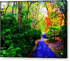Kentucky Lane Acrylic Print